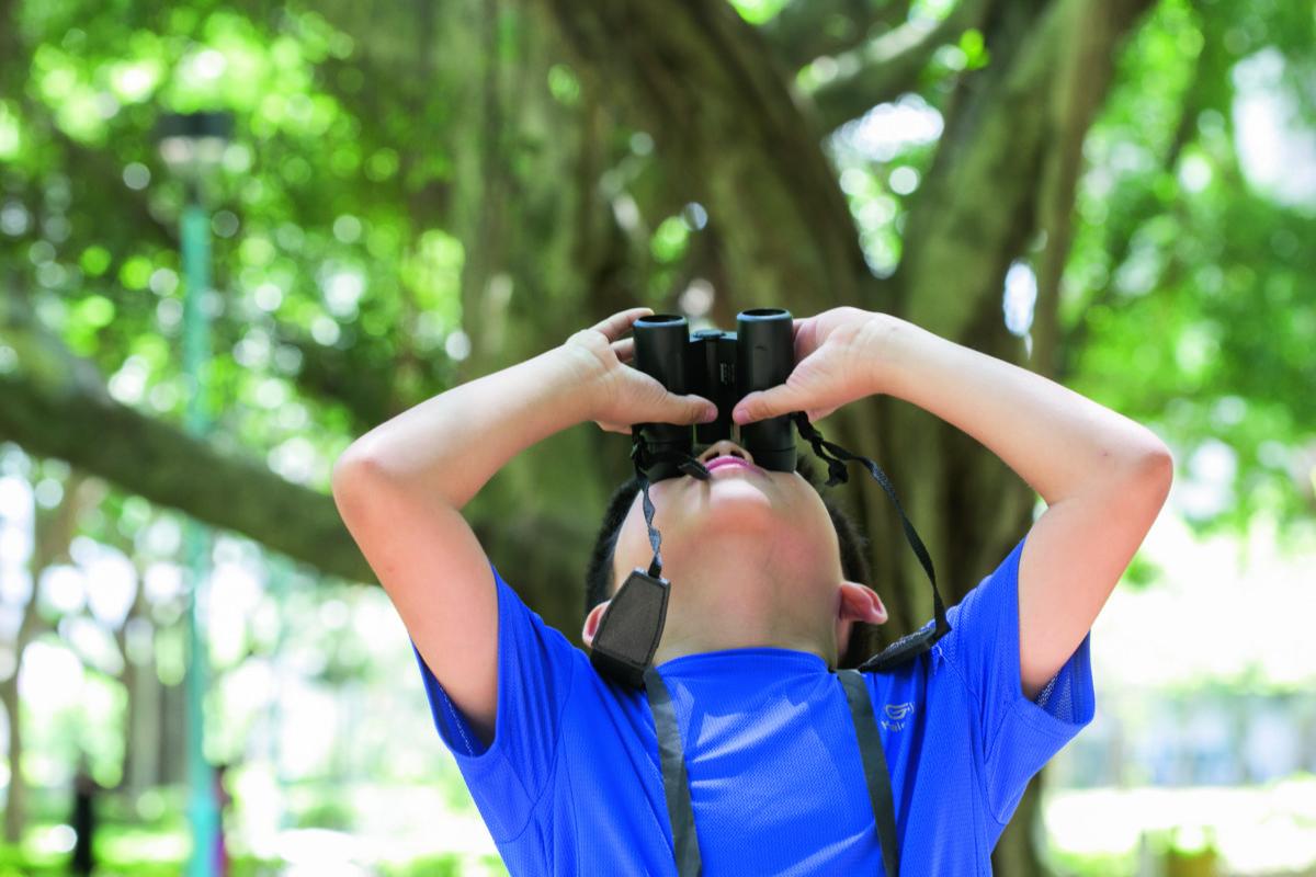 專注力不足的Ethan,觀察大自然的一個小時比任何人都專注。