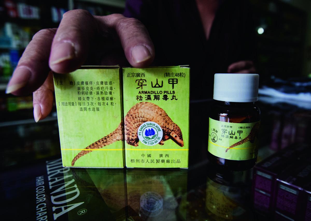 攝於印尼的一間中藥店。包裝表明藥含有來自廣西的穿山甲和龜成分,聲稱能治療各種急性和慢性皮膚病,包括腫脹、濕疹和疥瘡。(攝影:Paul Hilton,圖片由WildAid提供)