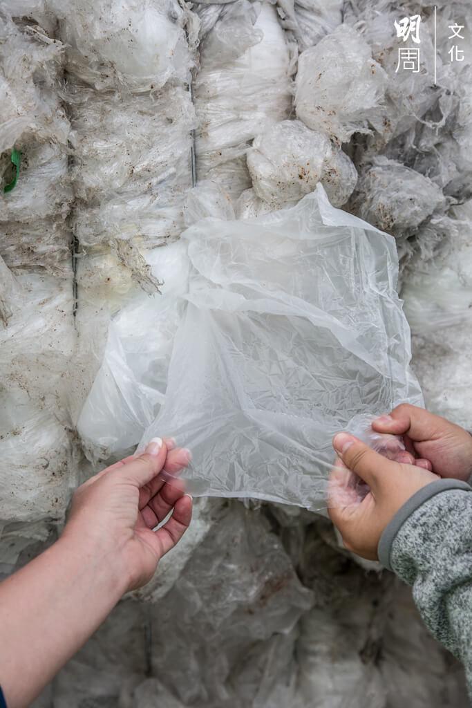 大自然分解一個膠袋,需要一千年。