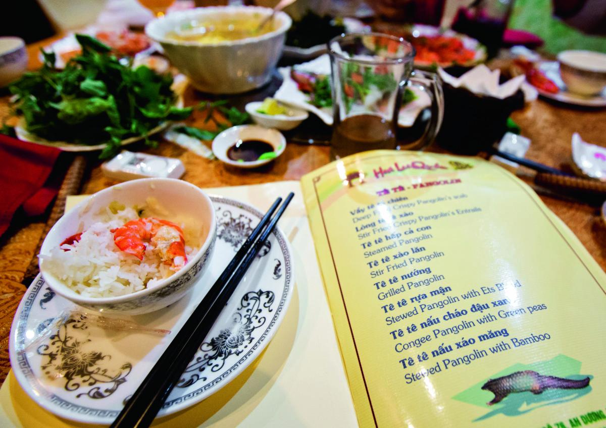 越南海防市的一間餐廳表示穿山甲肉可以油炸、清蒸或以穿山甲血燉的方式上菜。(攝影:Paul Hilton,圖片由WildAid提供)