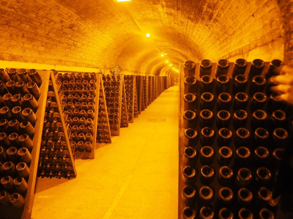 酒窖長達28公里,是地區內面積最大的地下酒窖,其溫度保持在攝氏20度左右, 為葡萄酒提供好環境。