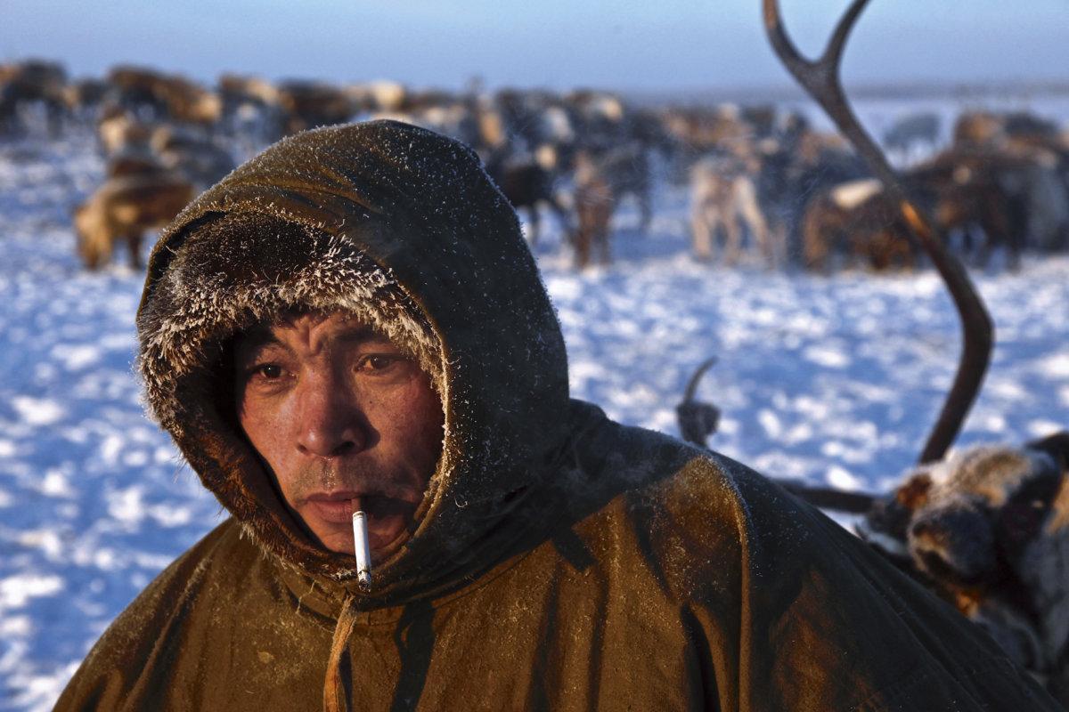 以馴鹿為生的涅涅茨人早在幾百年前就已經在俄羅斯北極地區生活了。他們居住在俄羅斯涅涅茨自治區納里揚—馬爾市外的北極苔原中的帳篷中,溫度為零下四十度,近年被天然氣和石油勘探的影響致流離失所。
