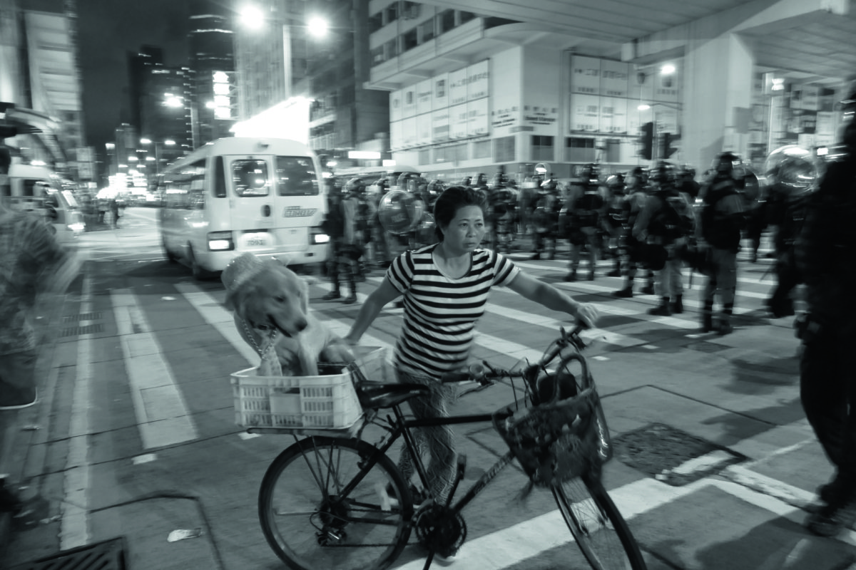 Bicyclist, her dog, and police outside Mong Kok Police Station, Prince Edward, Kowloon, 2 September 2019