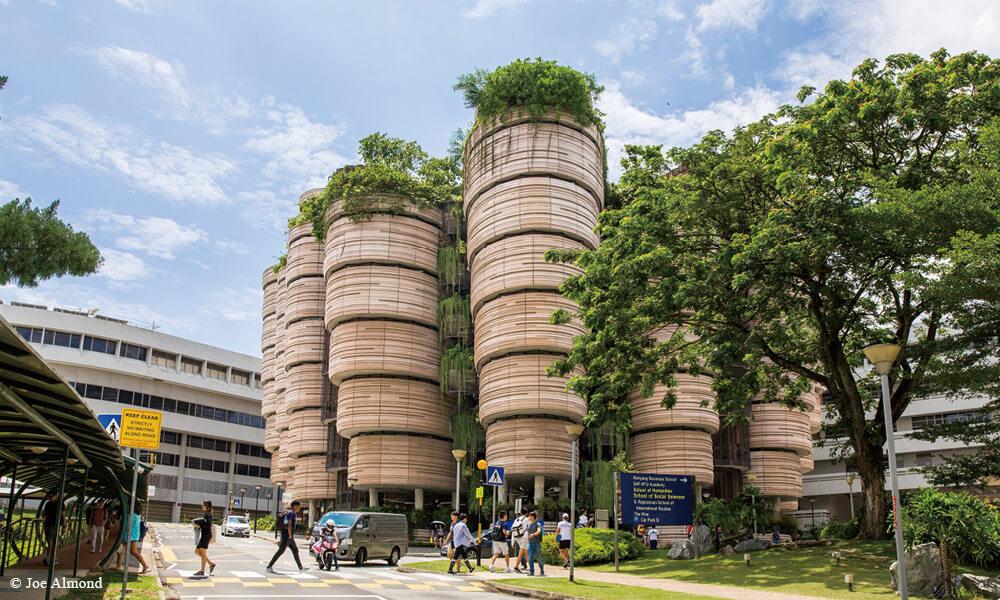 坐落於新加坡南洋理工大學校園的 The Hive 學習中心(Learning Hub),將每層十二個課室劃成橢圓形,猶如花瓣般從中庭向外延伸。
