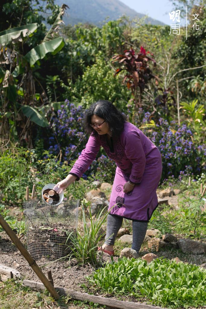 這一年,慧沁都在忙着創業,要在台南重建像梅窩舊居的大自然生活,恐怕不是一時三刻可以做到。