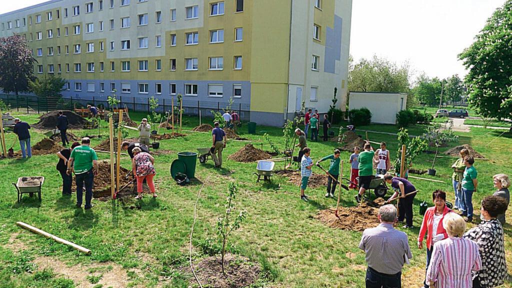 社區農場是不同年紀的市民互相認識和交流的好地方,這裏每年一次慶祝收成。