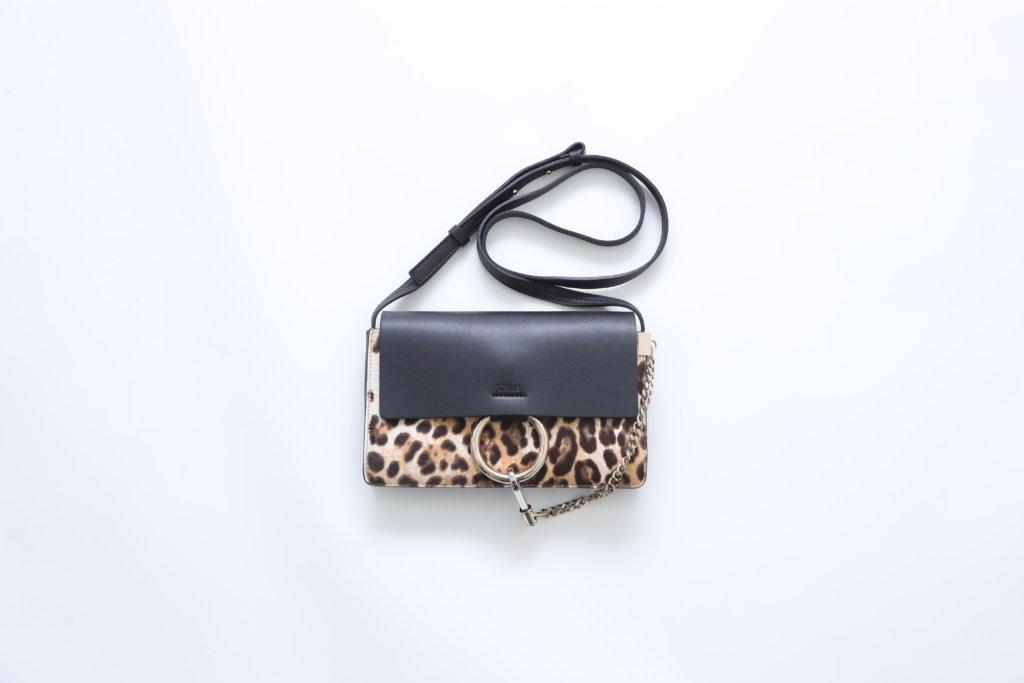 Chloe 手袋 $4,500