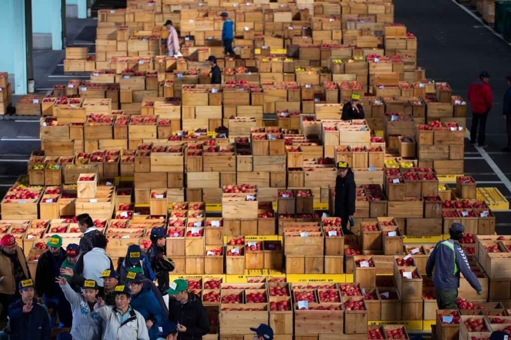 在日本青森是蘋果產量高的,單是2018年產量達445,500噸,足可裝滿四千四百五十五萬個10公斤容量的紙箱。