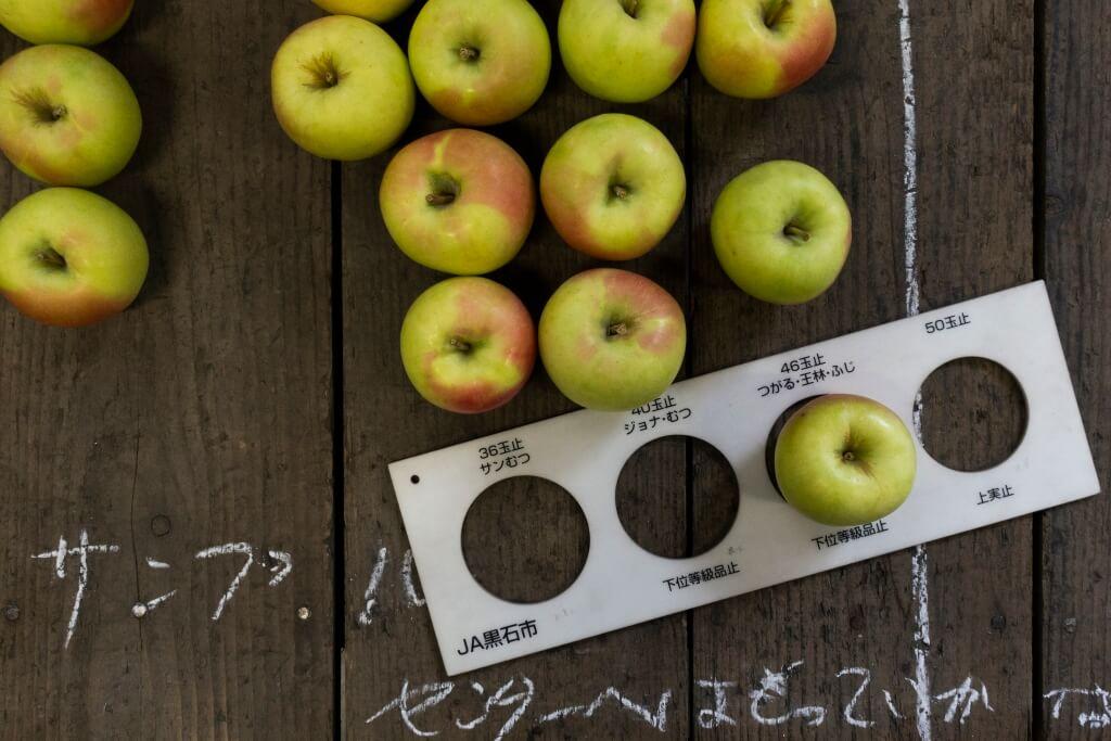 現場設有專門量度蘋果大 小的間尺,把蘋果套入圈圈內, 能填滿圈圈的就代表了那個大 小級別。