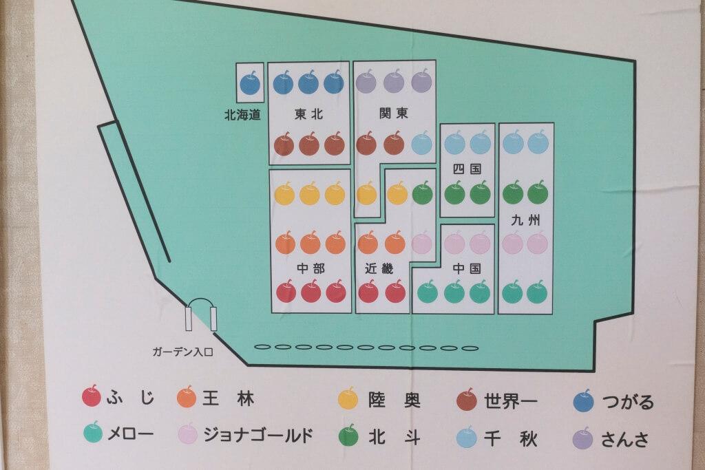 館內還展示了這裏果園所種植的果種,及比例。
