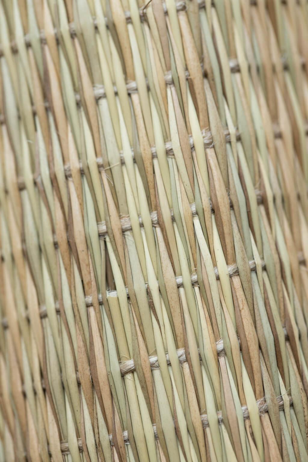 新工鹹水草在用料、編織上與傳統有別。選料上,用上淡水草代替,色澤帶青,手 感相對軟滑,但編織上相對欠細緻,每條水草色澤、粗幼有別。