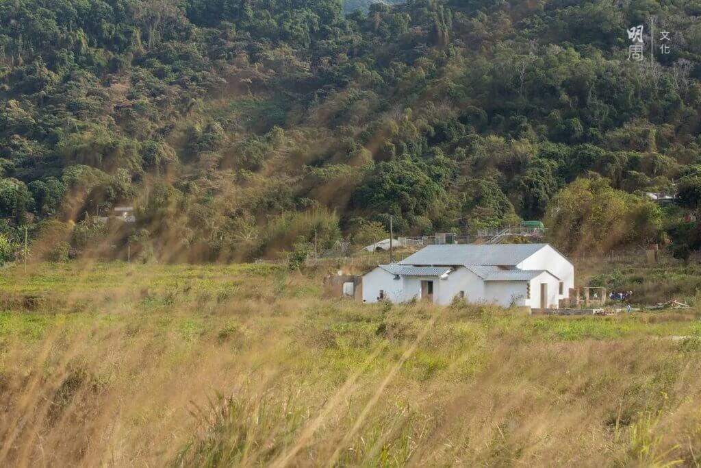 復修後的白色大屋立於大帽山下,一片綠油油的田中心,如世外桃園。