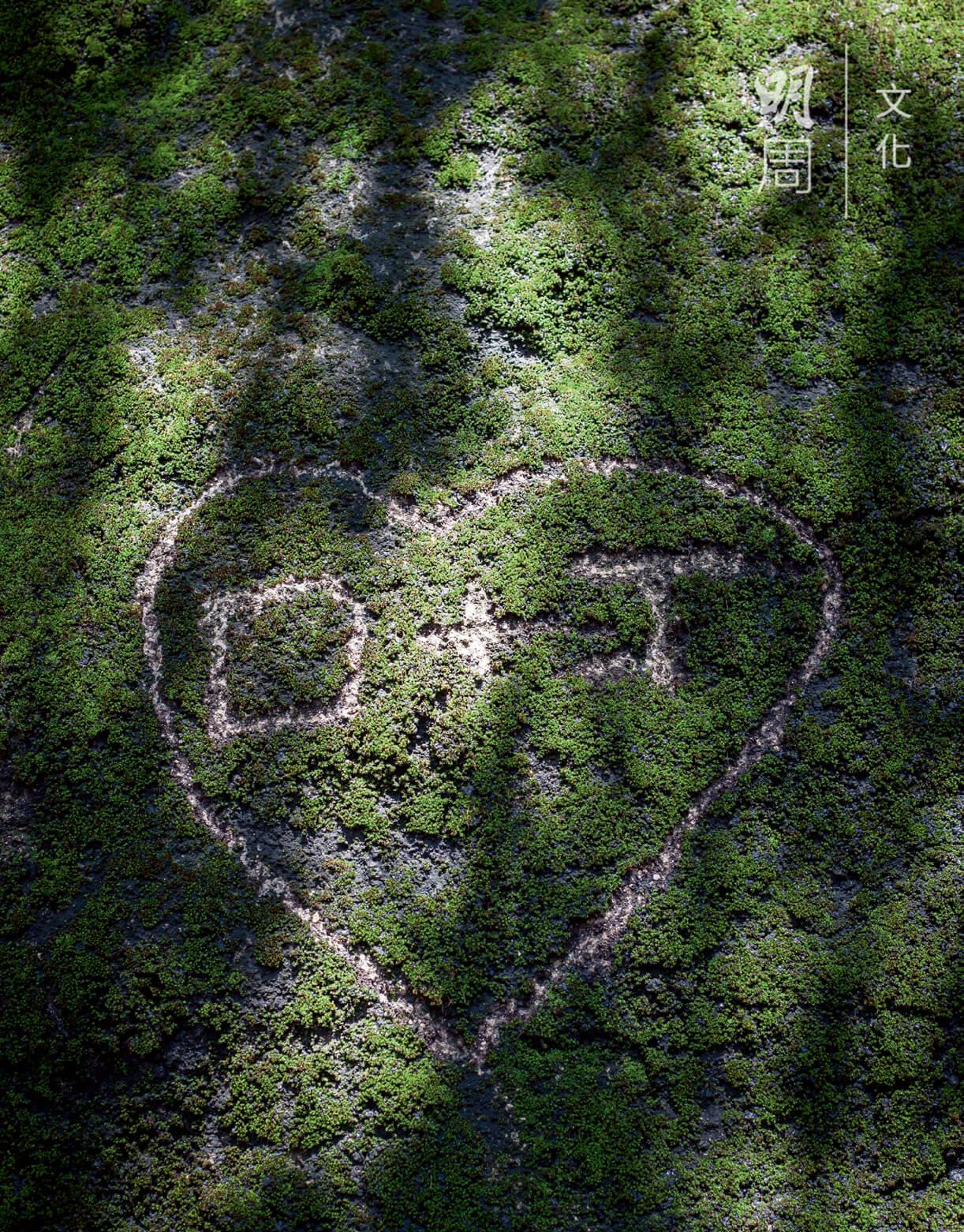 苔蘚滿佈岩石上,被人留下愛情印記。