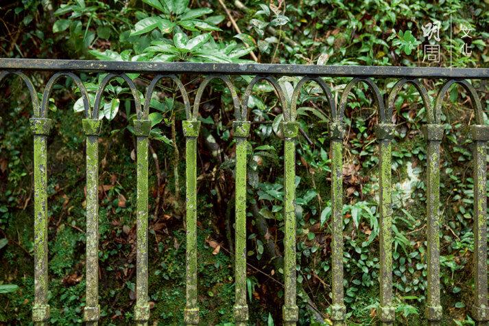 欄杆表面也苔蘚滿佈,是路上空氣清新的標示。