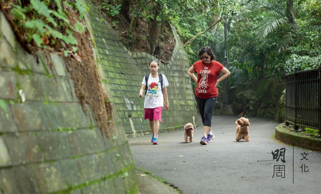 主人們帶同家中小成員 一起來散步。