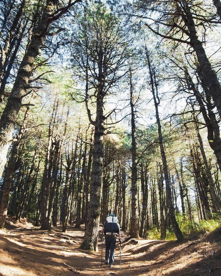 她既欣賞大自然的奧妙,又一步一步地踏上綠色環保的路途上。