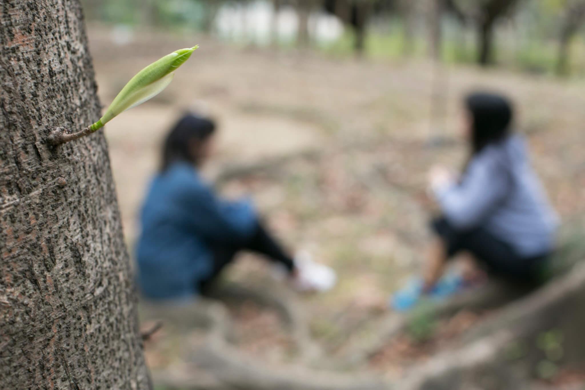 縱然傷口難以結痂,但阿哲發現透過傾訴,可以令彼此找到慰藉,如絕處栽花。