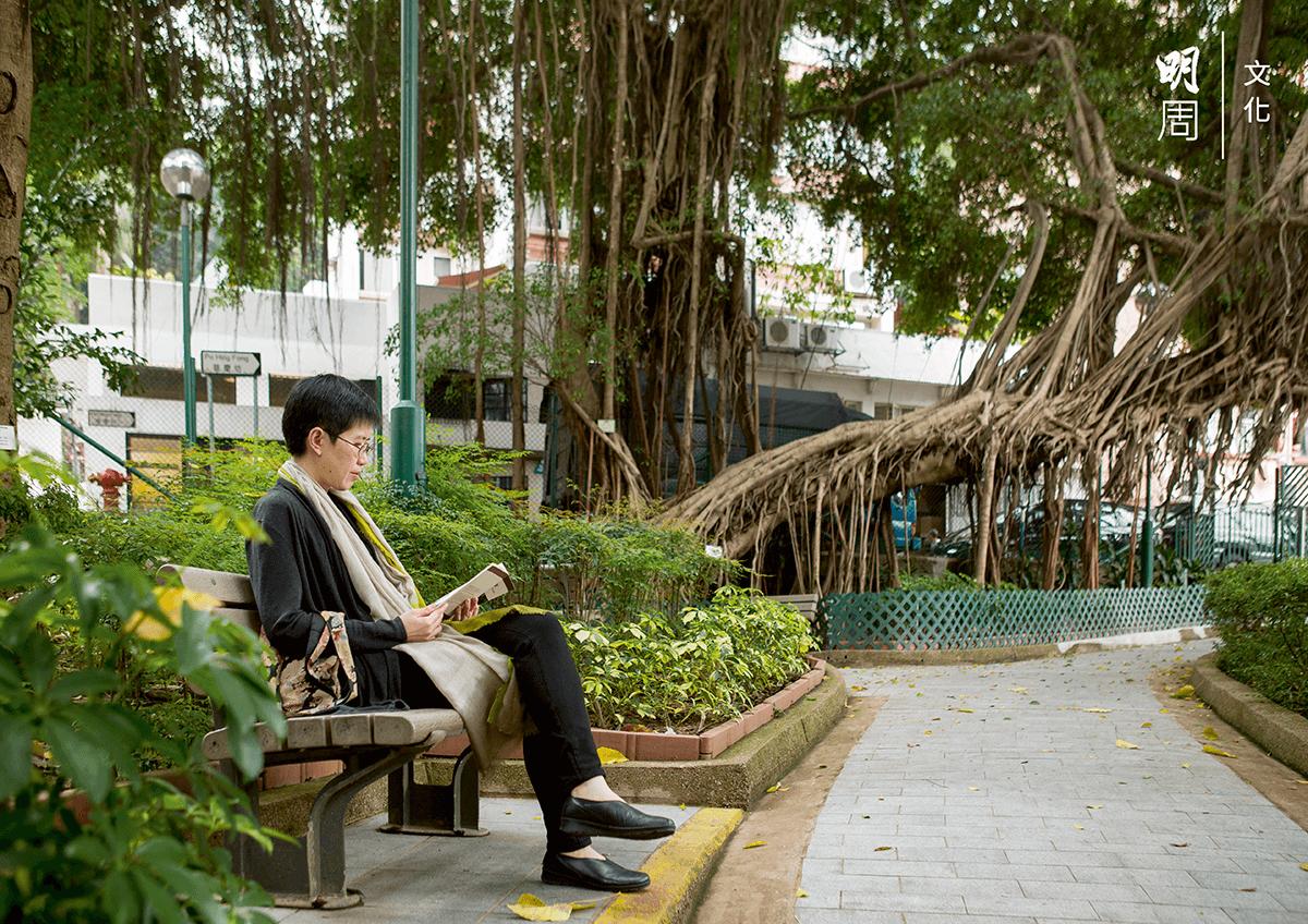古樹名木包圍的卜公花園,讓人休憩身心。