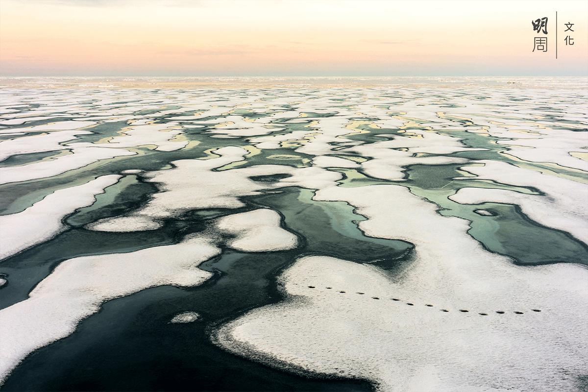 過去二十五年,北極的冰層下降四成。