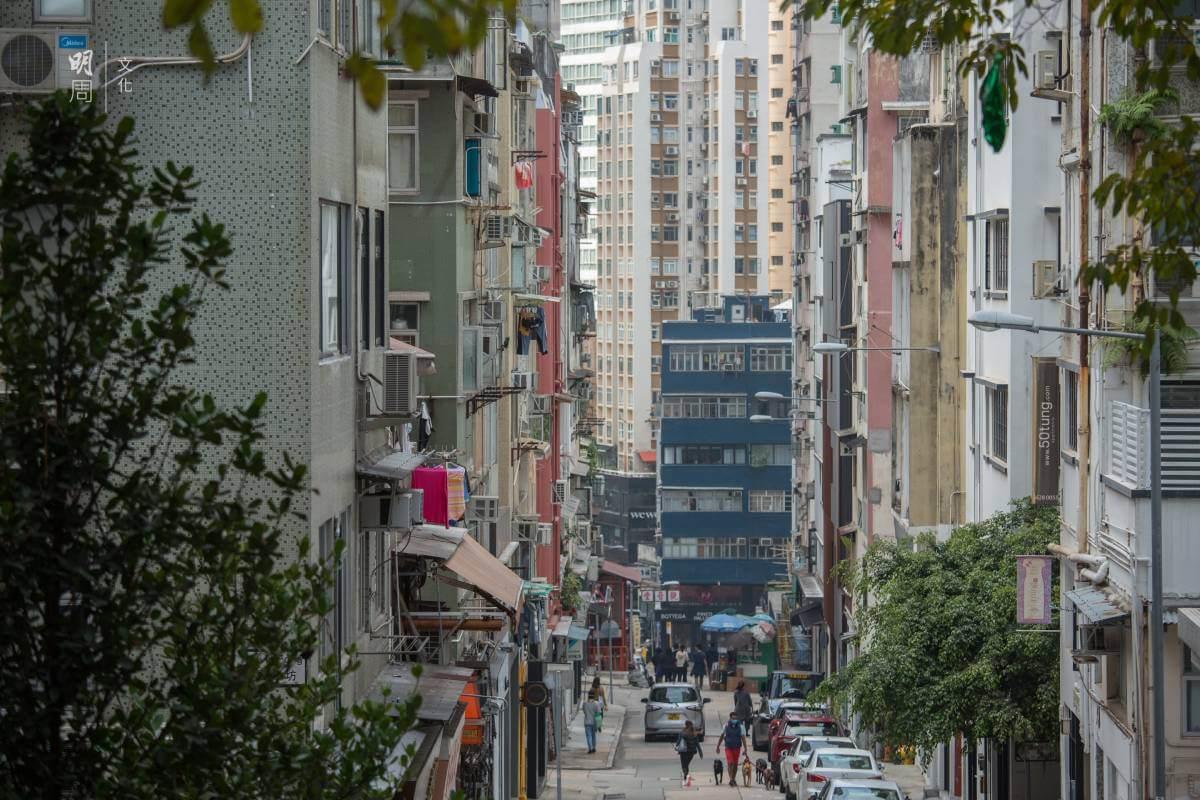 太平山街清拆後興建了卜公花園(下圖),以減低密度。現時的太平山街一帶是區內的「文青」小區,有不少小店進駐,環境清幽。