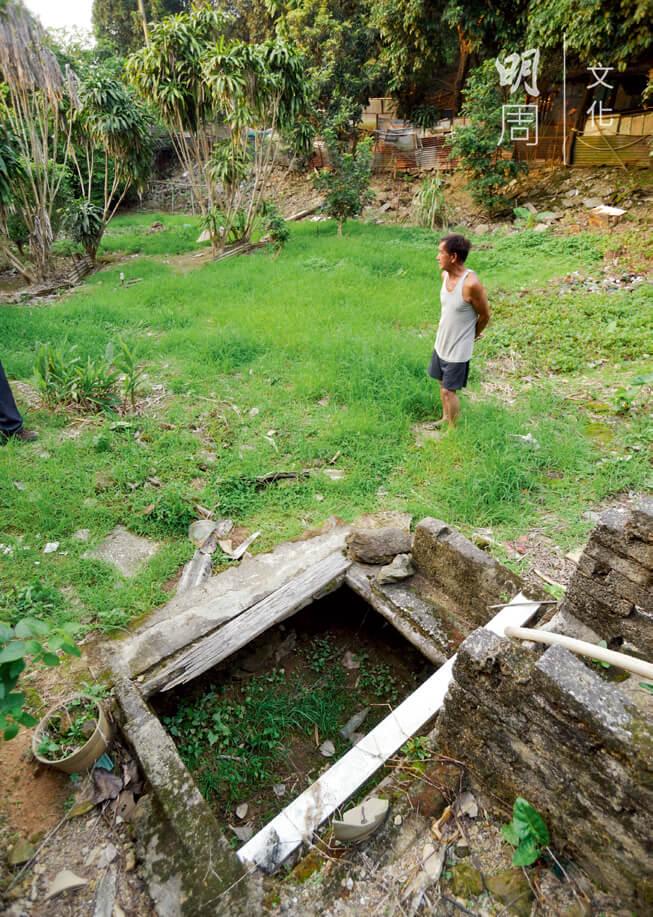 李先生家的水井乾枯見底,西洋菜水田變成雜草叢生的旱地。