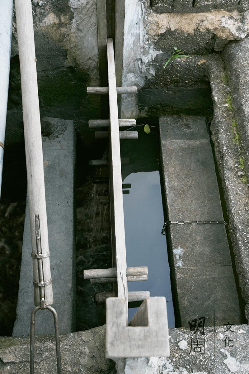 這種傳統的養蝦方式自二戰後隨中國移民帶來香 港,只需利用數塊木板來控制水閘的開關。