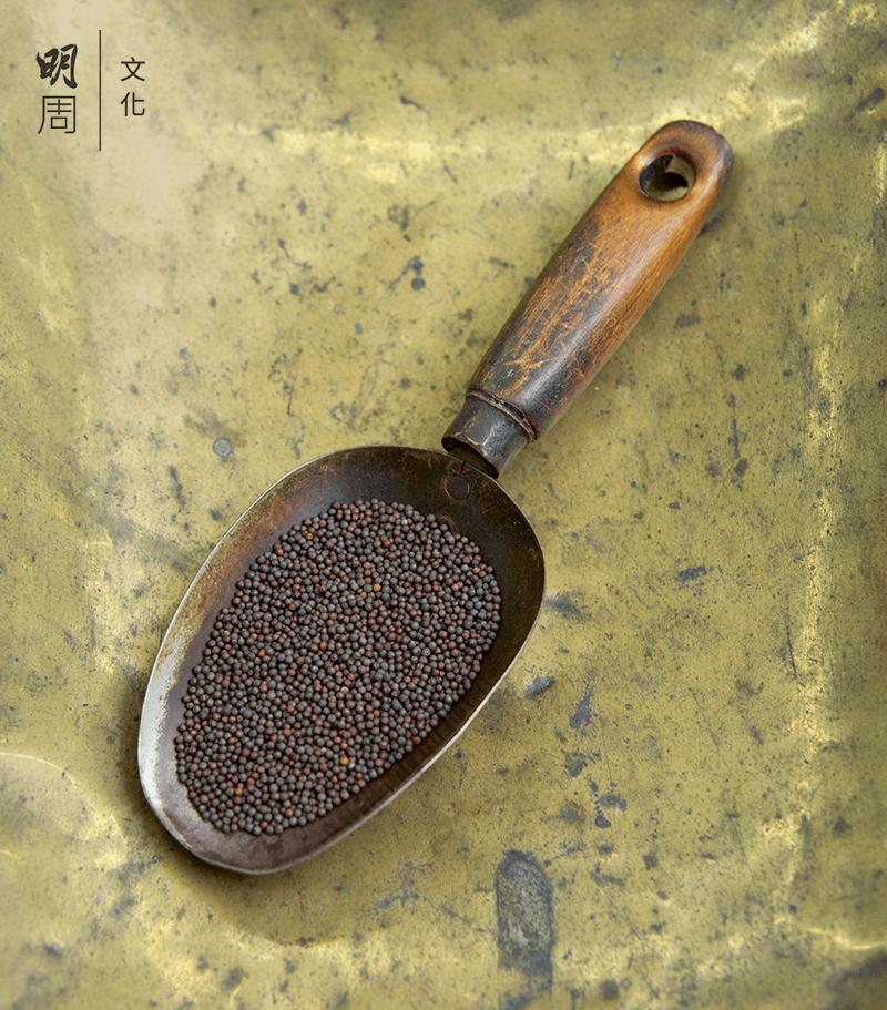 馬振興的傳家寶,一勺正好就是一両種子。