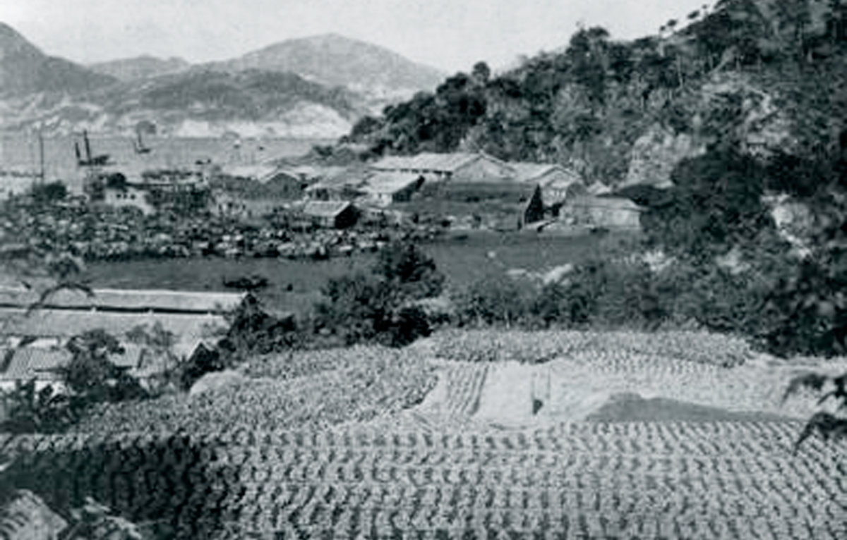 二十世紀初的西灣河(圖片出自《東區風物志》,東區區議會提供)