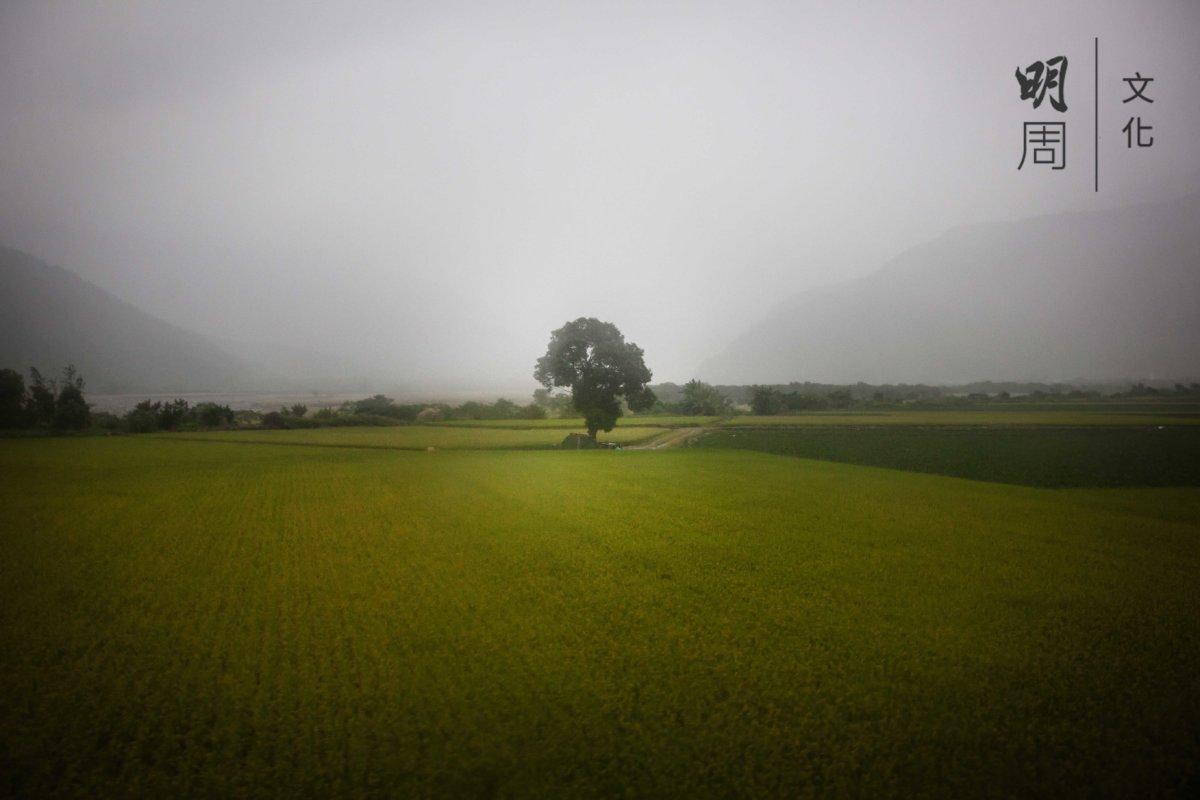 城鄉規劃以在地人為主體,珍視良田與農業的價值,才稱得上永續發展。