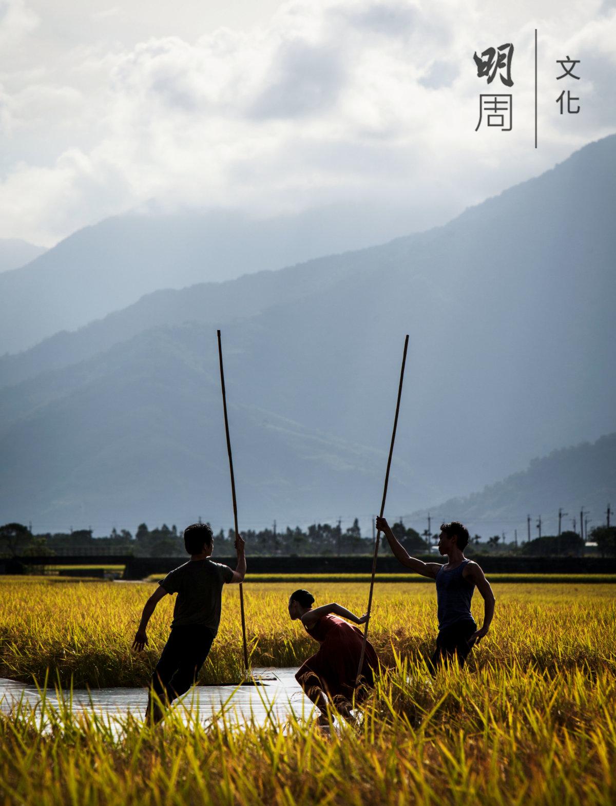 雲門舞集四十周年,創作了一齣名為《稻禾》的現代舞蹈,從池上的泥土、日光、風和水,以及稻米的生命輪迴汲取靈感。遼闊壯麗的稻田山色盡收眼底,雲門還演出了《水月》和《渡海》選粹。