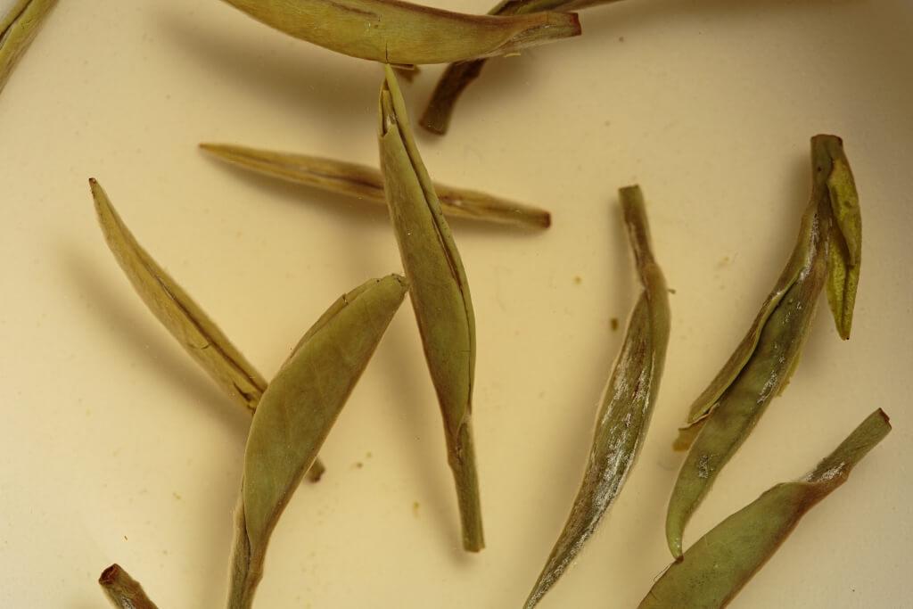 拍賣潛力追近普洱茶餅  時興收藏「老白茶」