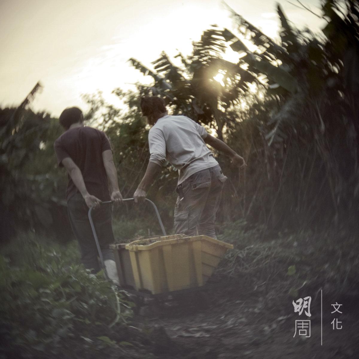 為避免傷害泥土中的生命而不鋤地,增加很多勞動,例如搬肥沃的泥補救貧瘠的土壤。(圖片由土丘提供)