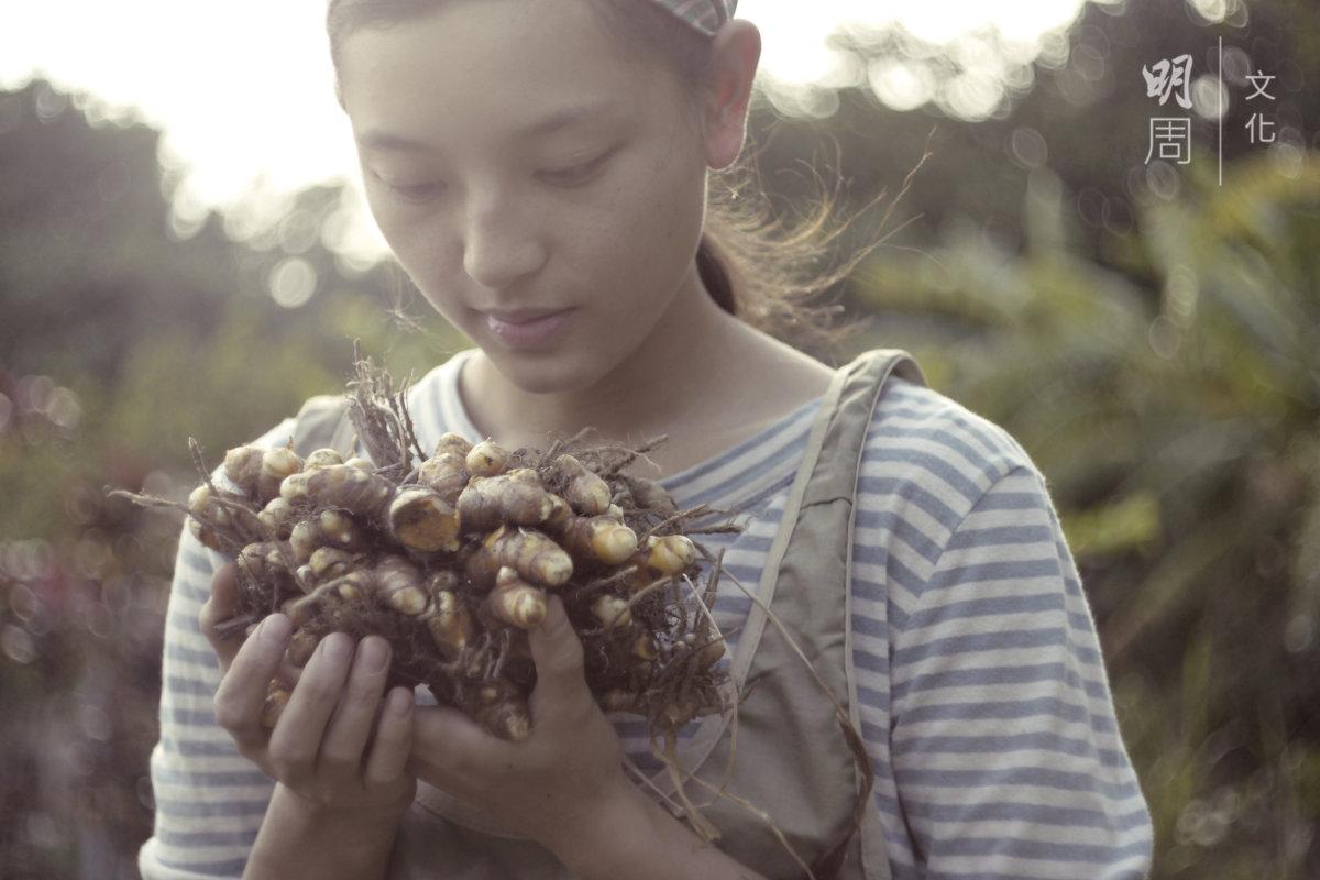 在土丘田種了一年的黃薑,捧在手裏,感受到土地的 溫暖。(圖片由土丘提供)