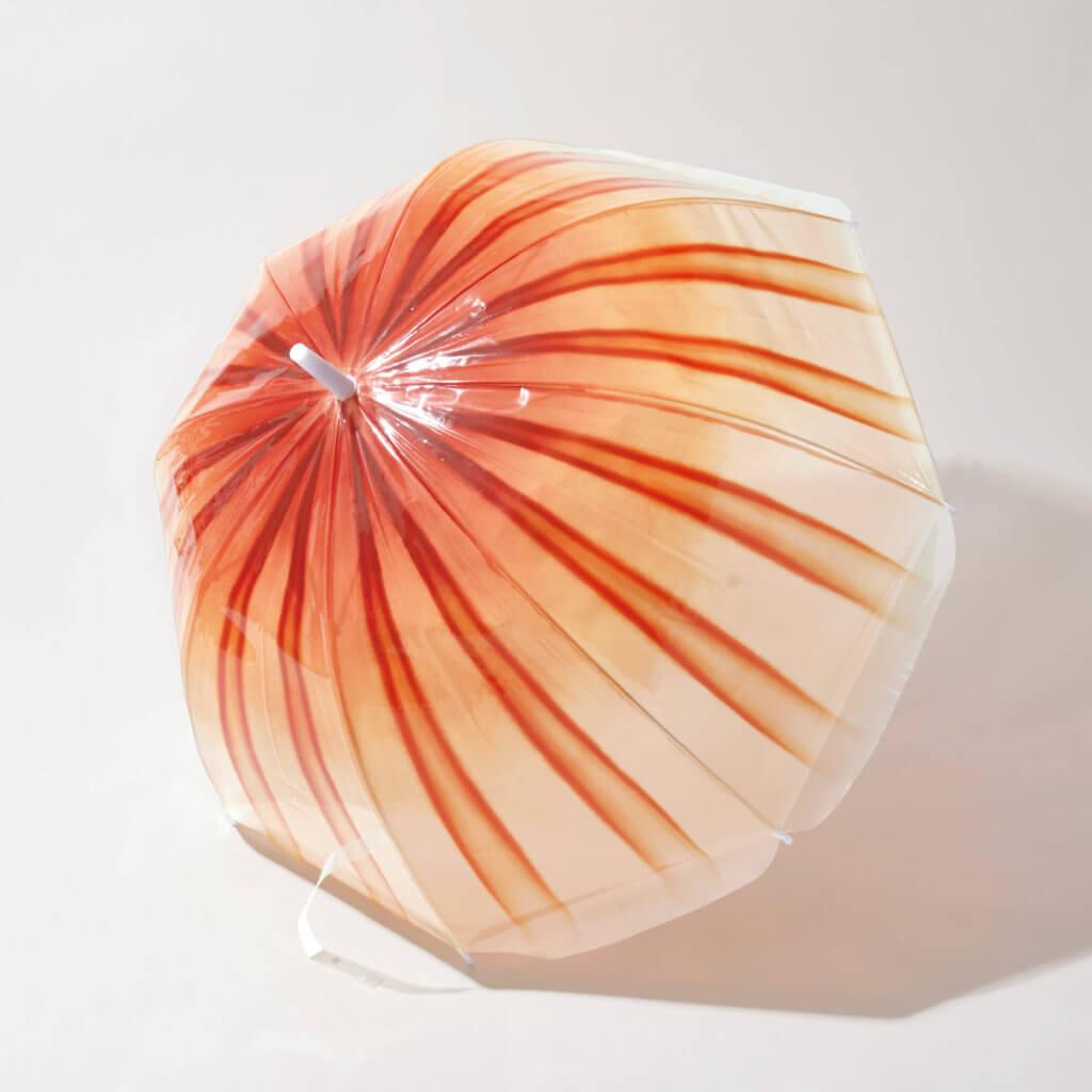透明傘保留了赤月水母的16條紋理,像極髮絲散開