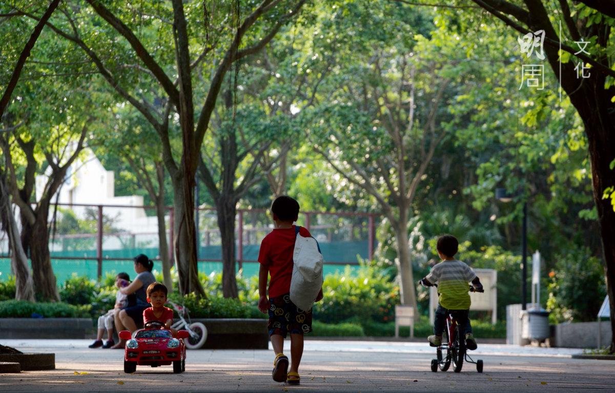 西灣河遊樂場,孩子們玩樂,有大樹庇護。