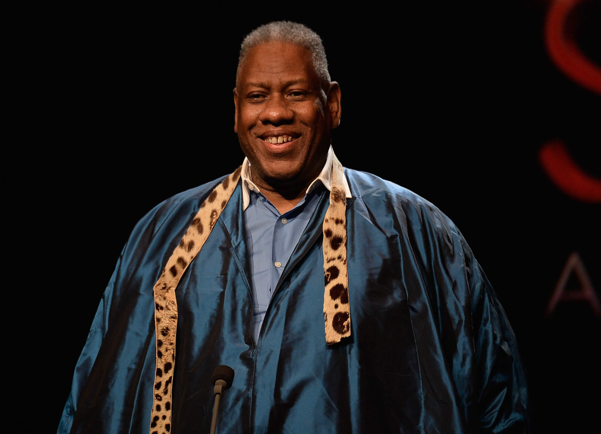 NEW YORK, NY - SEPTEMBER 04: Andre Leon Talley speaks onstage at the 10th annual Style Awards during Mercedes-Benz Fashion Week Spring 2014 at Lincoln Center on September 4, 2013 in New York City. (Photo by Frazer Harrison/Getty Images for Mercedes-Benz Fashion Week)