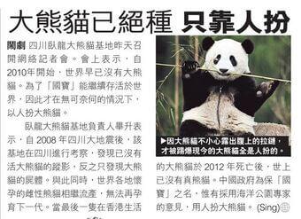一年愚人節有免費報章搞搞新意所刊出創作「假新聞」,笑指熊貓其實一早絕種,目前仍然「生還」的其實都是人扮的。(網上圖片)