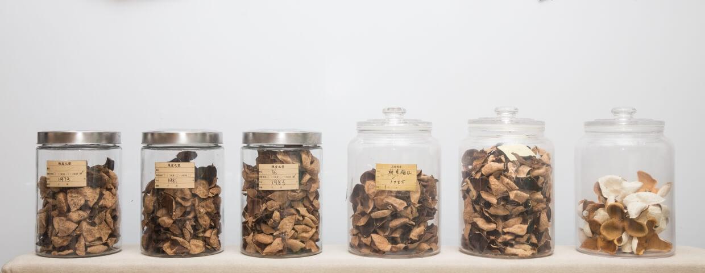 亞保收藏了不同年份的陳皮,最老的逾80年。