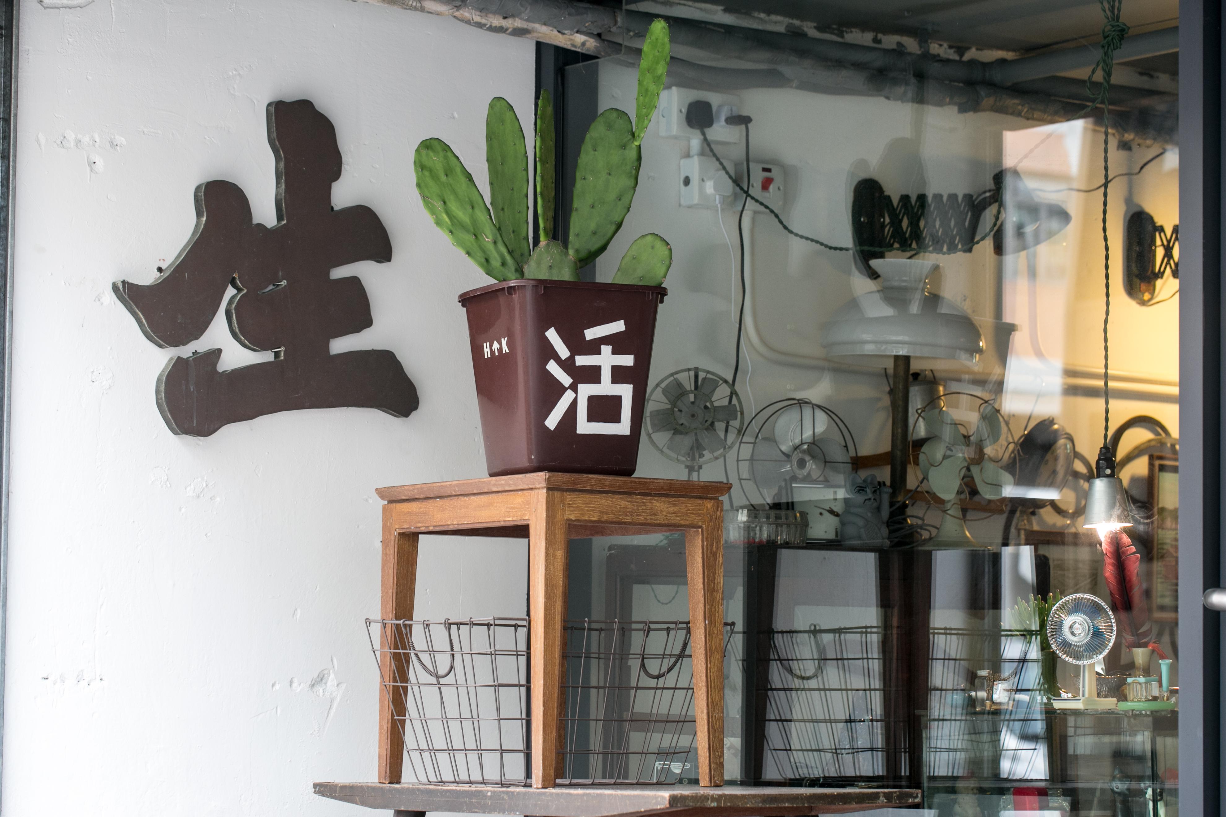 「店小二」吸引不少年輕「文青」造訪