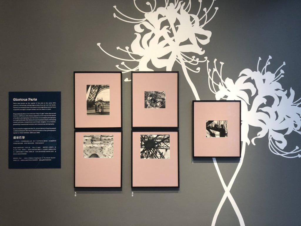 展覽以彼岸花圖案及她在巴黎鐵塔拍攝的照片拉開序幕,寓意其攝影人生的開始。