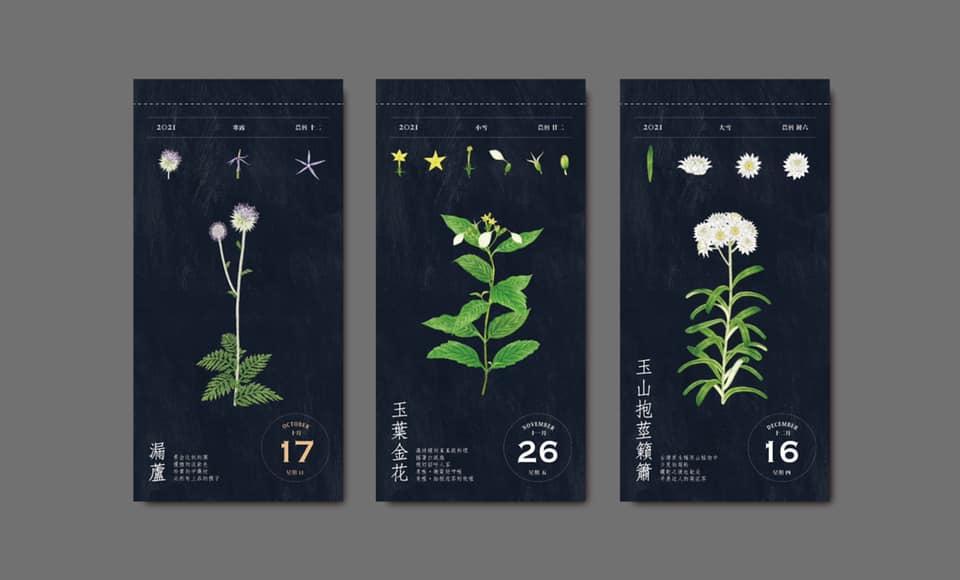 除了畫下每種花草盛放之美,種籽設計還述說它們發芽、生長、枯萎等姿態。