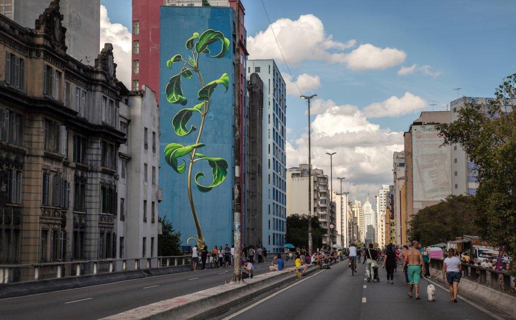 圖為〈Uma planta no Minhocão(像巨型蚯蚓的植物)〉,似是童話故事裏直攀上天的藤蔓。