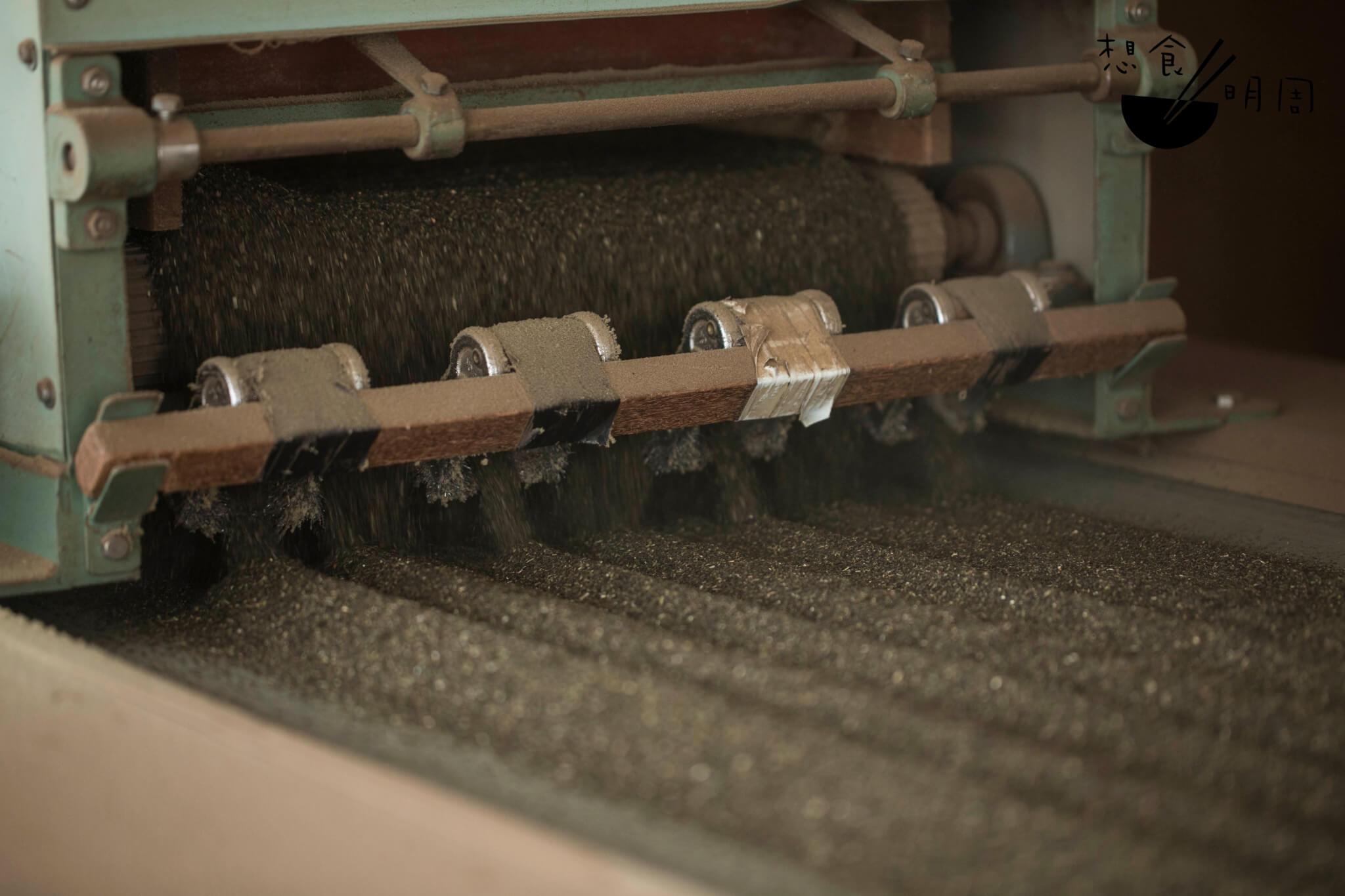 茶葉經吹風除塵後,會平均切成1.5mm大小,徐徐從輸送帶上推送而出。