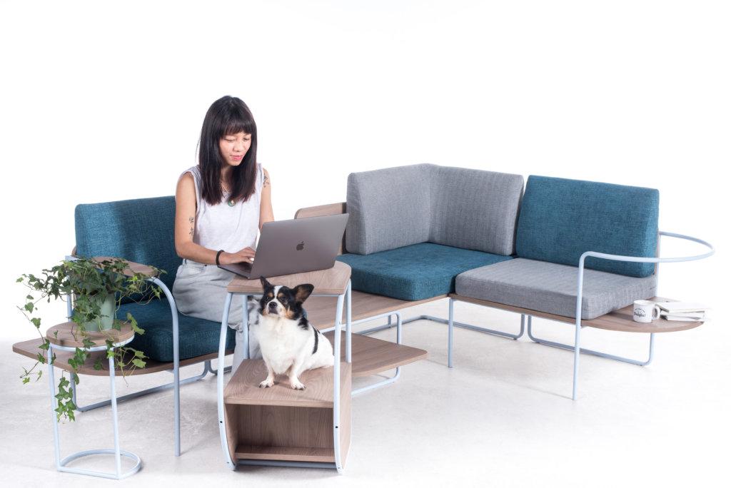 這梳化設計能夠讓主人和寵物在家中無時無刻互相陪伴對方。