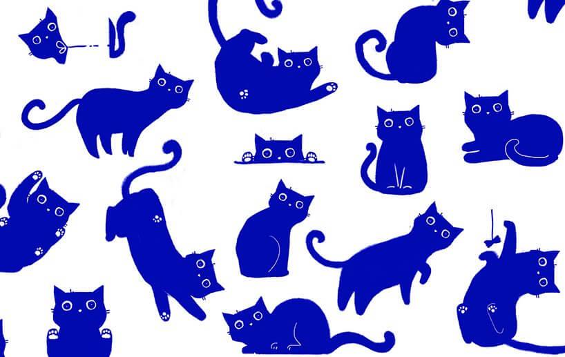 不同店鋪,有不同的貓咪陳示方式。逛超市也變得充滿期待。