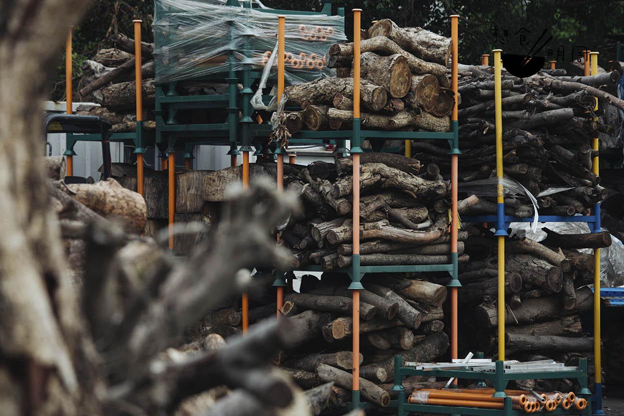 分門別類地堆疊的木材,有些正等待入爐乾燥,有些正等待伯樂帶回家。