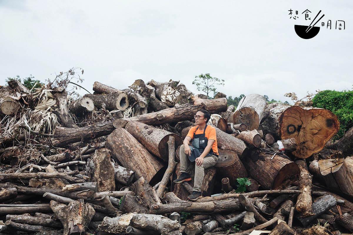 在Ricci的木庫內,有大埔的松樹、屯門的白千層、山頂的假柿樹、河背的大葉紫薇、西貢的白蘭⋯⋯你問得出,他答得來。芸芸眾木,得以積聚於此,皆因有樹倒下。香港樹之「死」原因眾多,或許是本來就不適合種下,或許是經年累月的風吹雨打,又或許是要讓路給人類成就家園。
