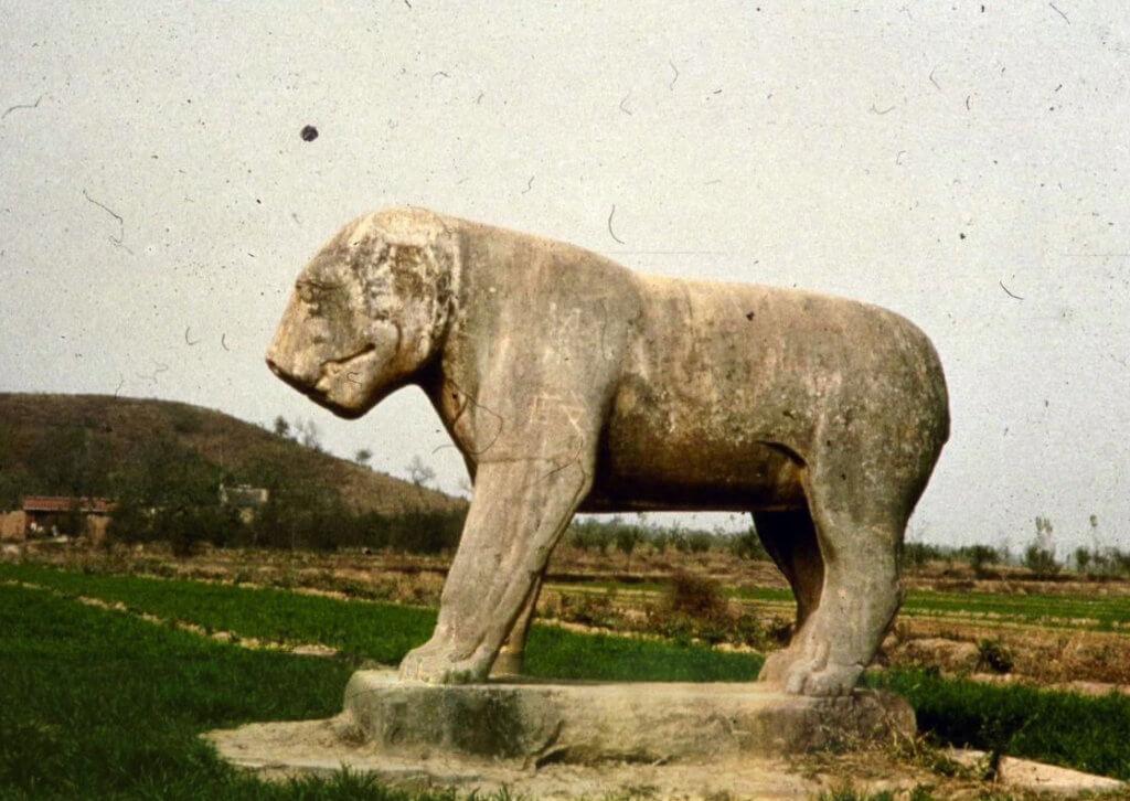 唐獻陵石虎 約貞觀九年(635)