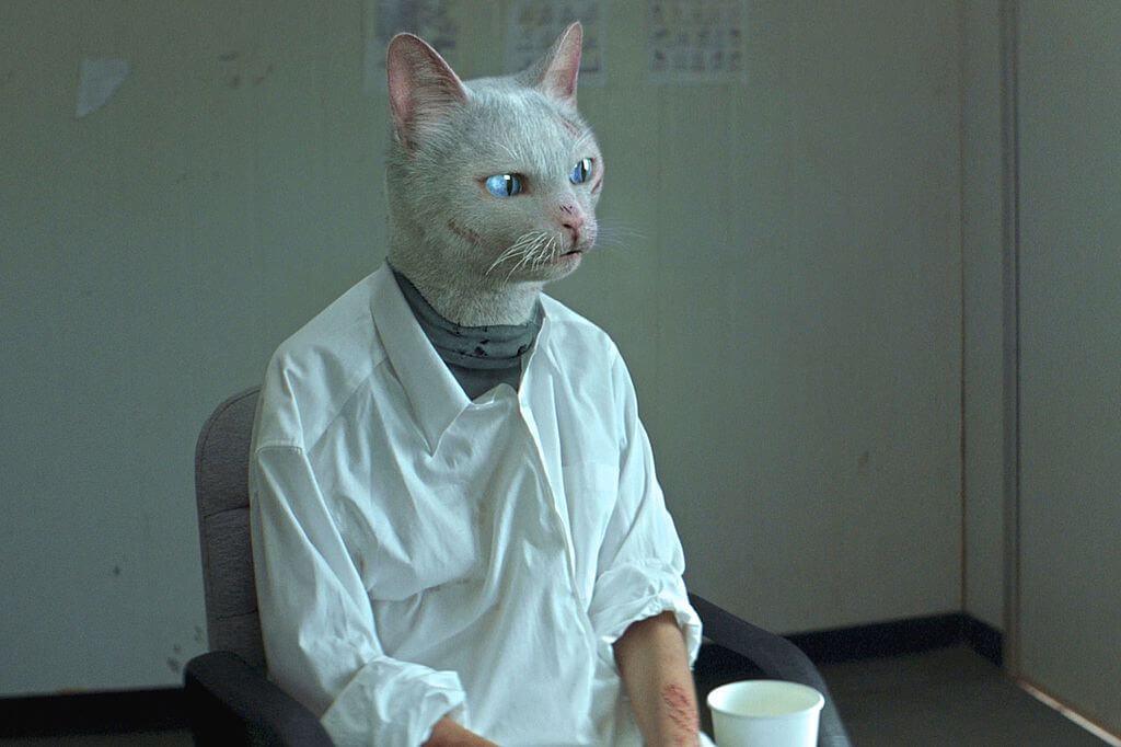 《Catopia》描繪貓在未來當道,殺害人類異己,人類主角只好扮成同類隱身當中。