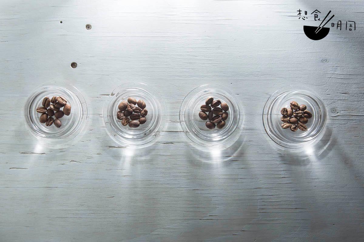 經新興的控制發酵法(右一)處理的咖啡豆,與經傳統處理法如日曬、水洗及濕剝法(左一至三)的豆子相比,外貌及香氣都有明顯的不同。